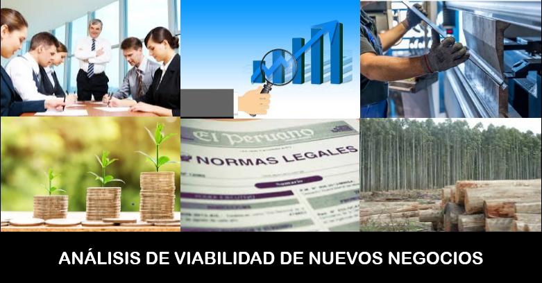 Análisis de viabilidad de un nuevo negocio